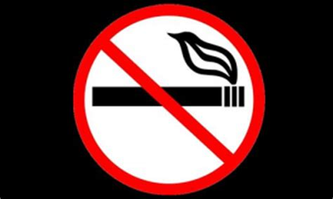 A, Ban on Smoking in Public Places Essay, Essay Get Sample